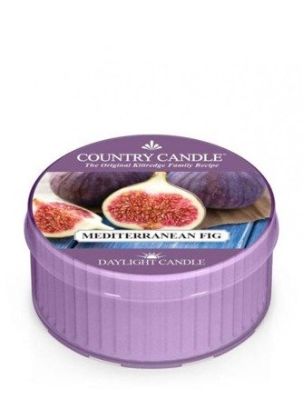 COUNTRY CANDLE Daylight Fig